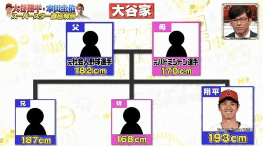 大谷翔平の家族は全員高身長